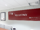 anatomy sign